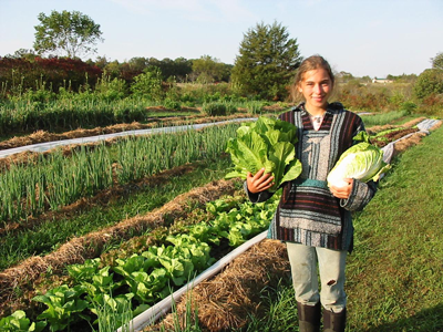 3 Benefits Of Growing Organic Food