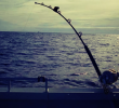 3 Benefits Of Electric Fishing Reels