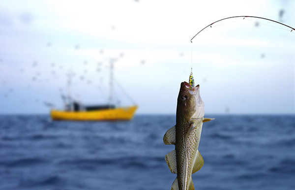 Science Says Fishing Can Help You Lead A Happier, Healthier Life