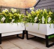 Beyond Innovative Design Benefits of  Self Watering Pots