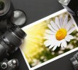 Photograph in Fashion: Choose the Right Camera for Your Passion