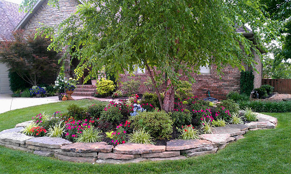 Gardening & Landscaping: Benefits of Planting Advanced Trees