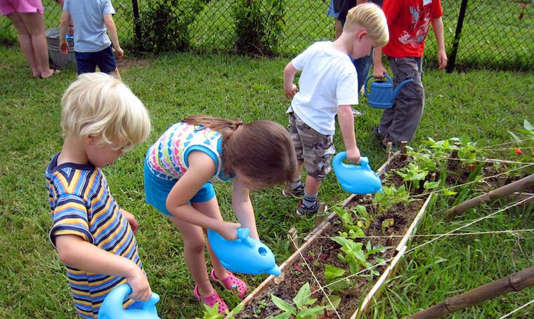 kids watering in the garden