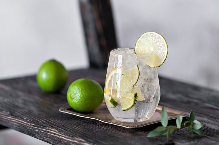 gin and tonic cocktail with lime