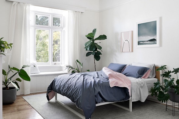 plants in nice decorated bedroom